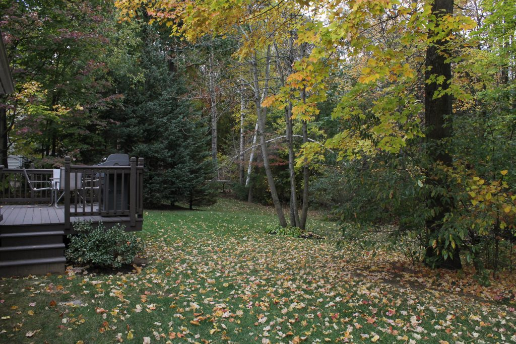 Private back yard, with a deck, garden, walking trails, and a fire pit.