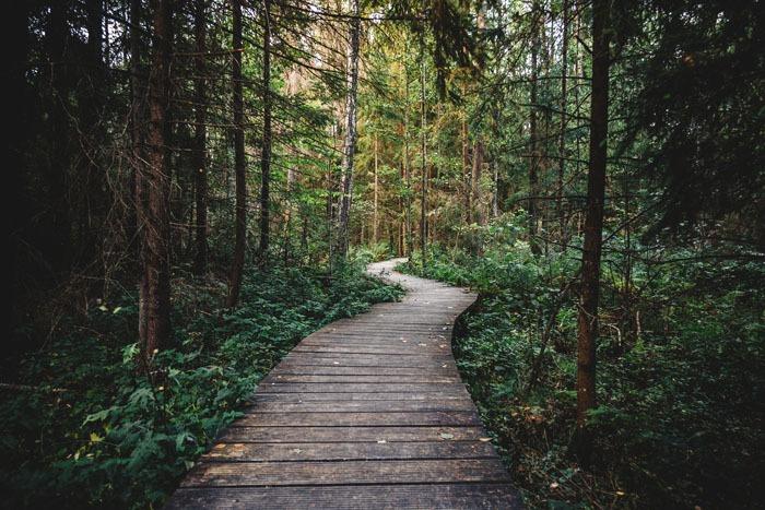parks-trails-recreation-saratoga-new-york-2