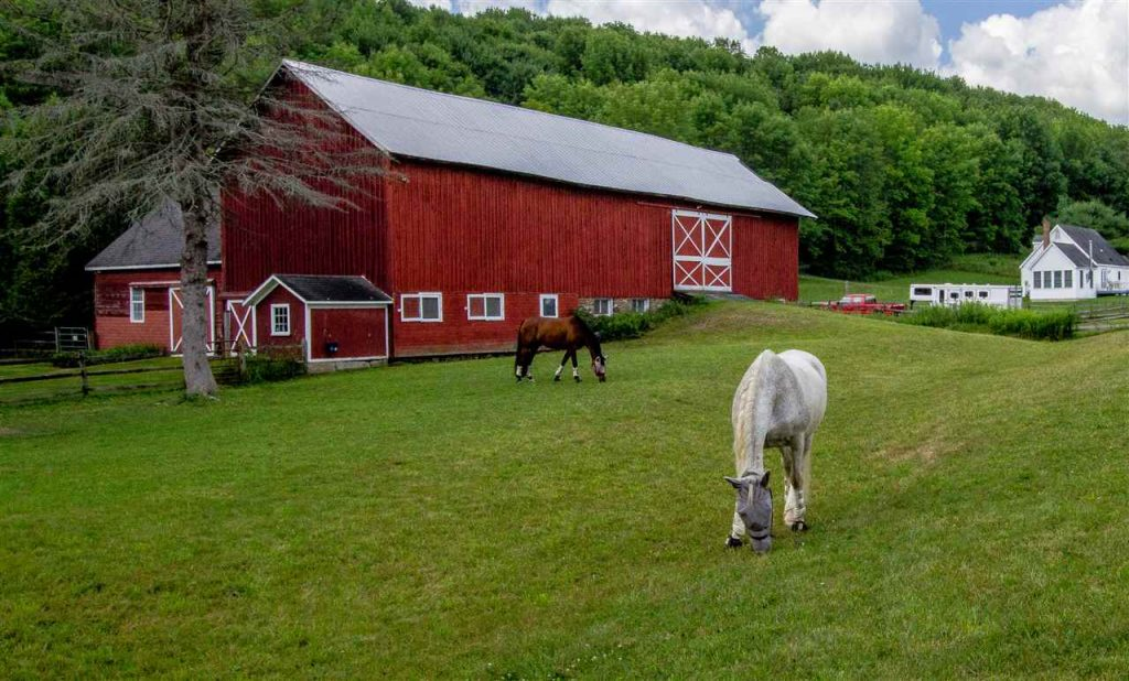 287 Jones Road, hartwick, ny is a home for sale with two horse barns, pastures and wooded views