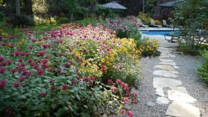 The garden path leading to the pool at Country House - Saratoga gardening tips from Roohan realtor Megan Alexander