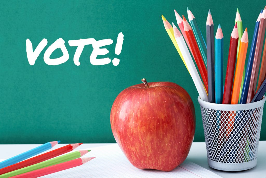 saratoga county school budget voting 2017