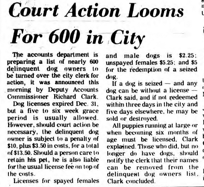 court action looms for 600 unlicensed dog owners in saratoga springs 1969