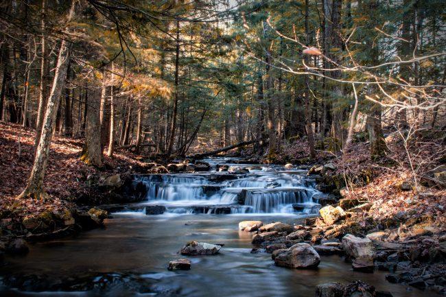 glowegee creek trails